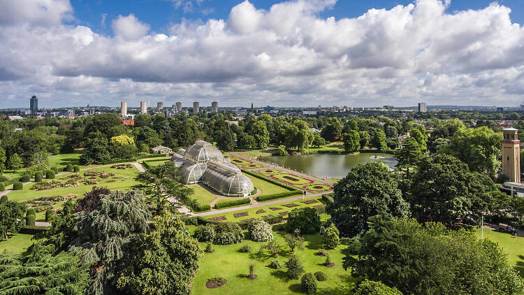Kew Gardens - Activities in West London